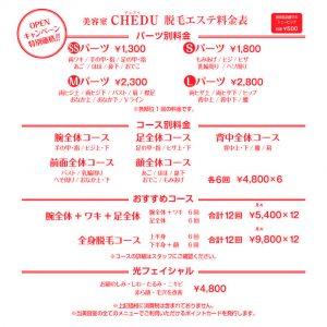 chedu_価格表